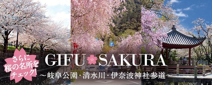 桜の名所バナー